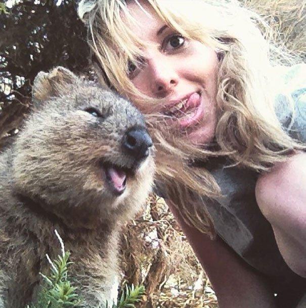 Turis pun bisa dengan mudah mengajak hewan tersebut selfie