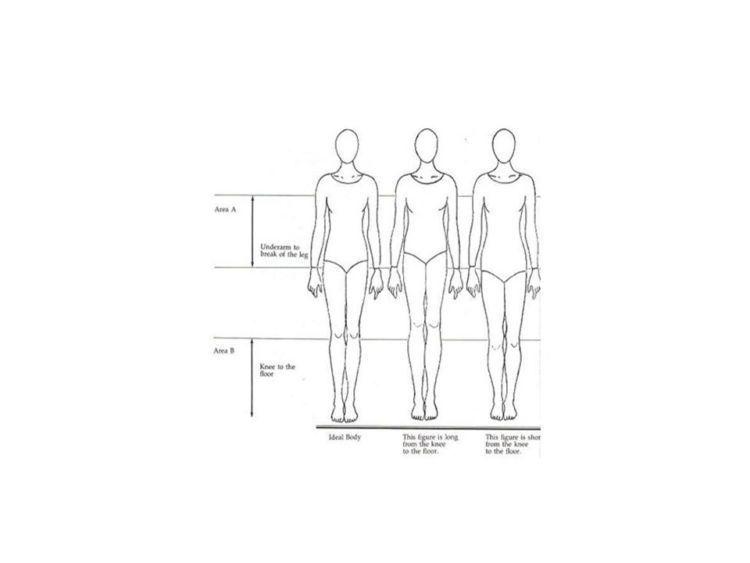 Proporsi normal, kaki panjang, dan kaki pendek.