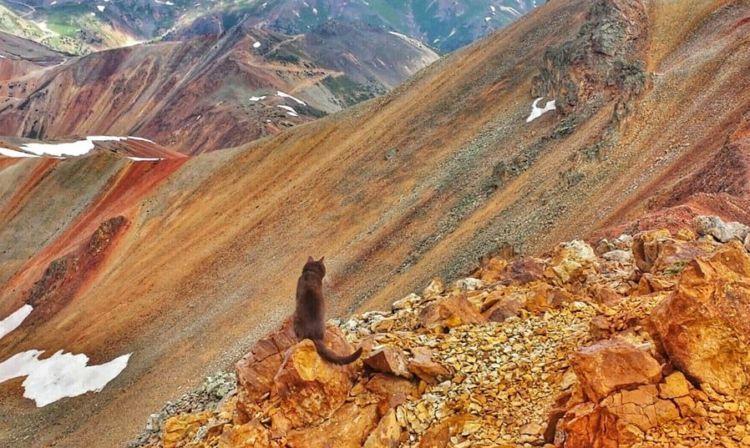 Ini Burma Lagi Berpetualang di Juan Mountains, Colorado