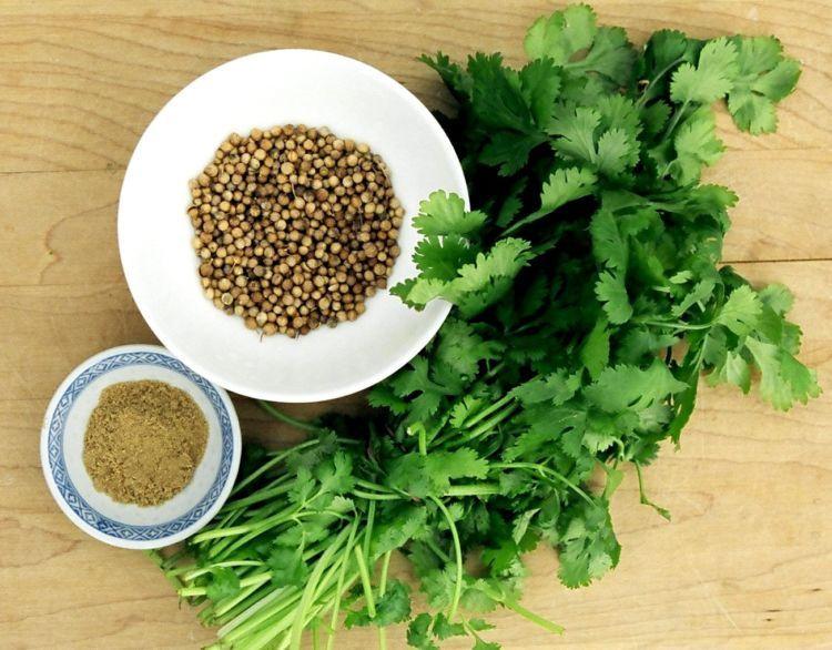 daun seledri mentah lebih sehat