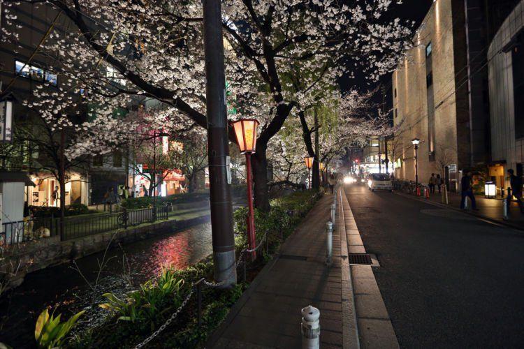 Jalanan di Kyoto yang romantis. Bikin galau kalau inget mantan (gebetan).