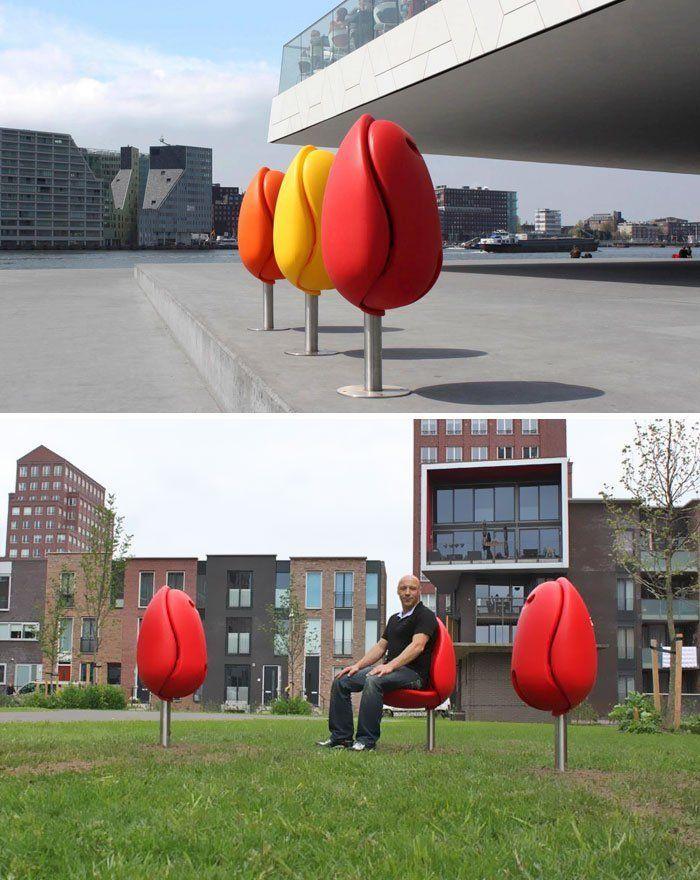 hayo tebak ini apa? Yap, kuncup tulip di Belanda