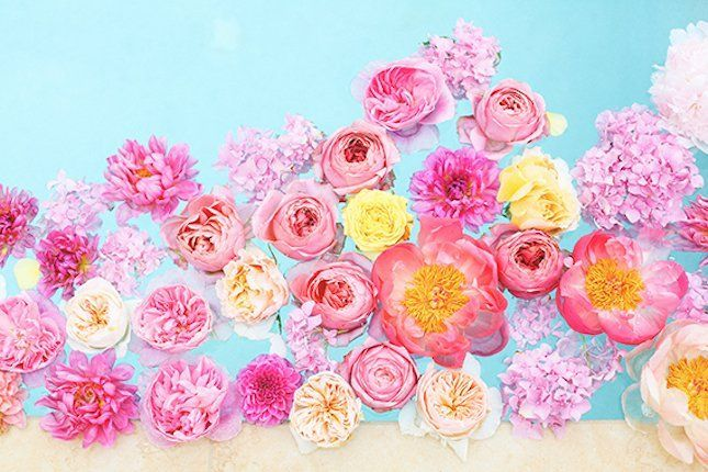 sebaran bunga mawar