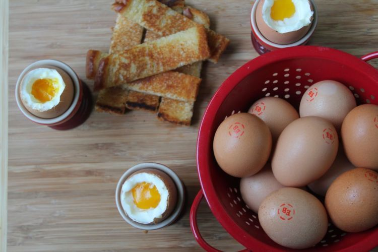 telur juga aman sih