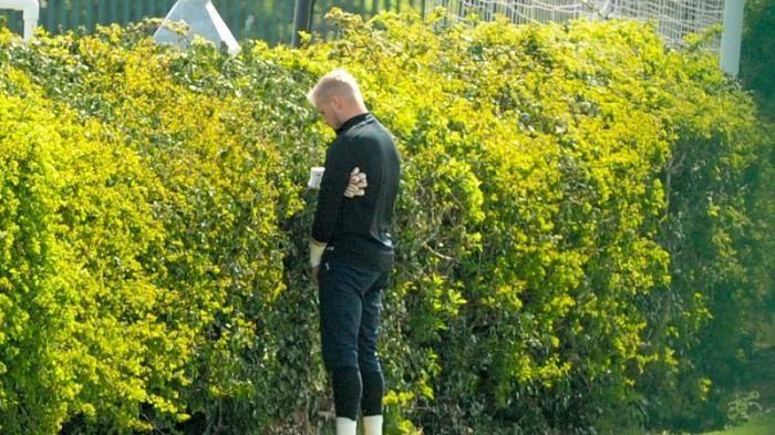 nggak perlu pohon tinggi, yang beginipun asal lebat bisa ;)))