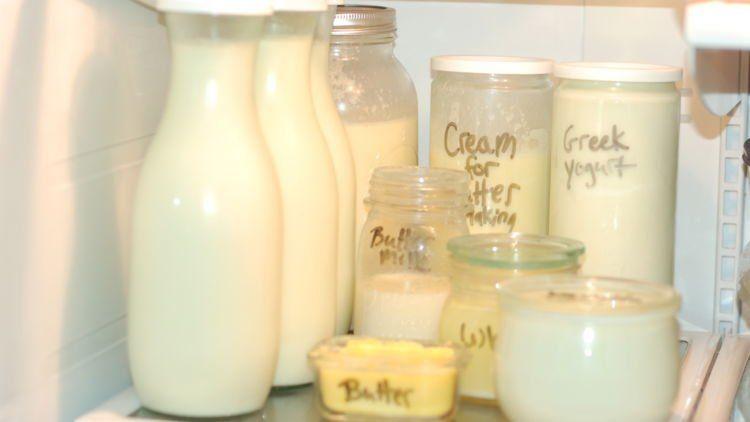 susu dan olahannya