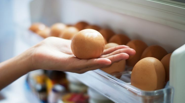 cara menyimpan makanan dalam kulkas
