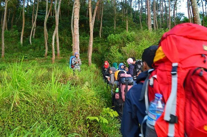 nggak cuma mendaki, berkemah atau dirikan tenda di tempat yang seharusnya