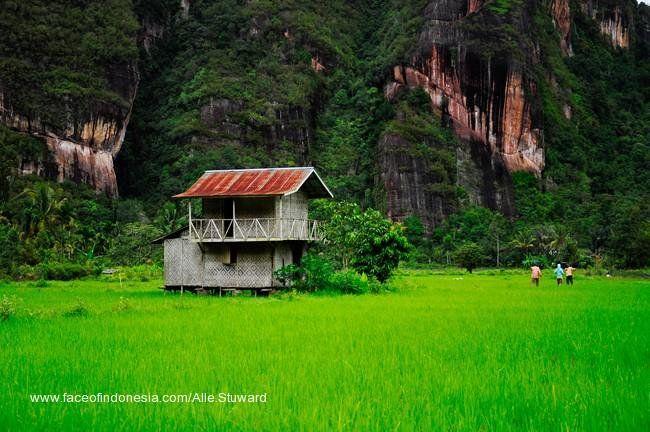 Nagari Pariangan di Lereng Marapi