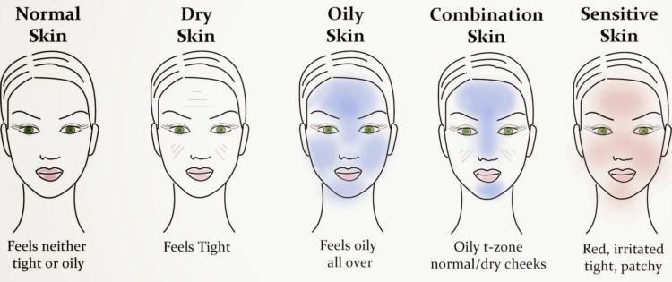 jenis-jenis kulit