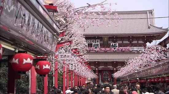 Jepang bisa jadi destinasi menarik di penghujung tahun