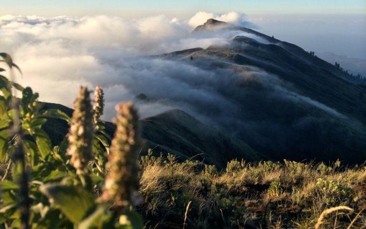 Gunung Tambora di Bima
