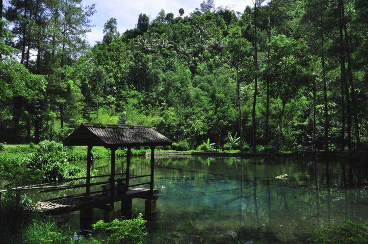 Habiskan Akhir Pekan Di Wisata Rambut Monte Blitar Cocok