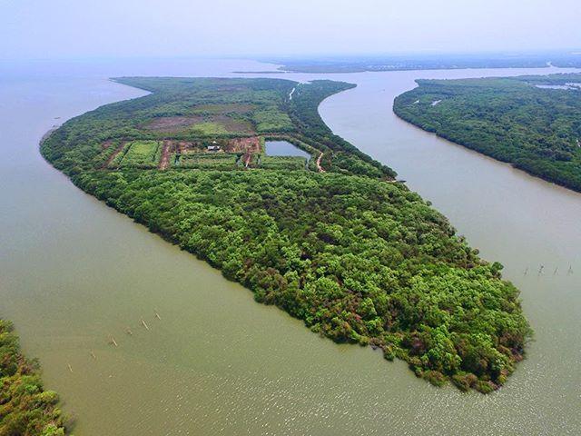 Ini nih pulau Sarinah