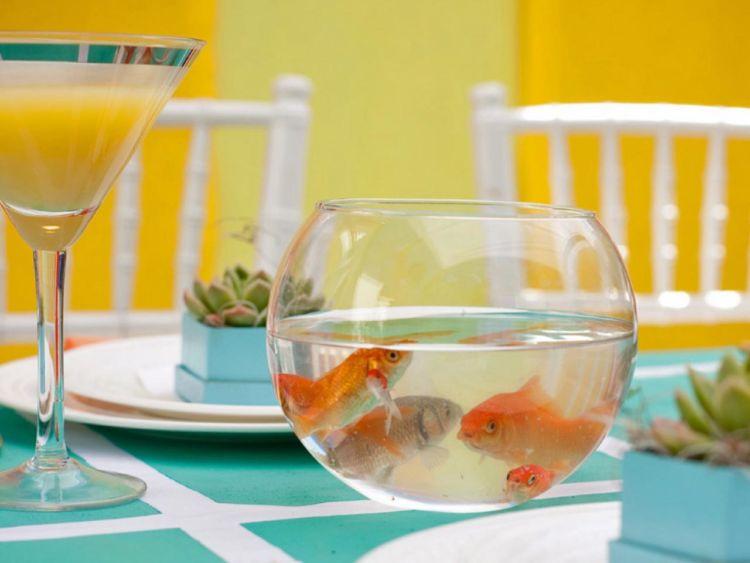 akuarium di meja makan