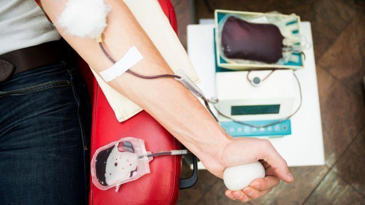 setelah donor darah