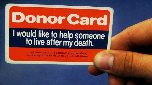 kurang lebih semacam ini kartunya