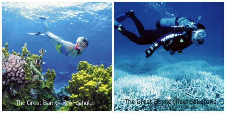 Kondisi The Great Barrier Reef yang sudah jauh berbeda