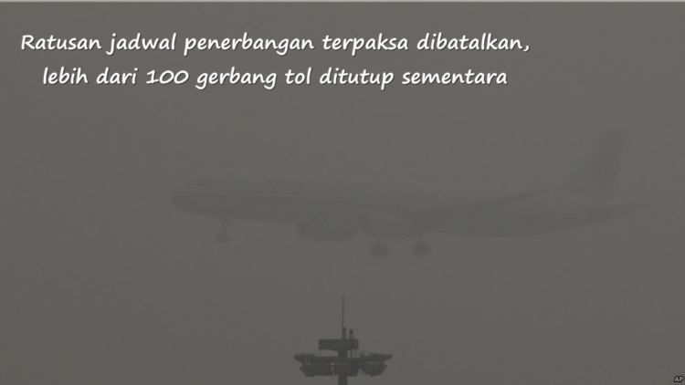 mau ngungsi, tapi pesawatnya nggak ada yang terbang :(
