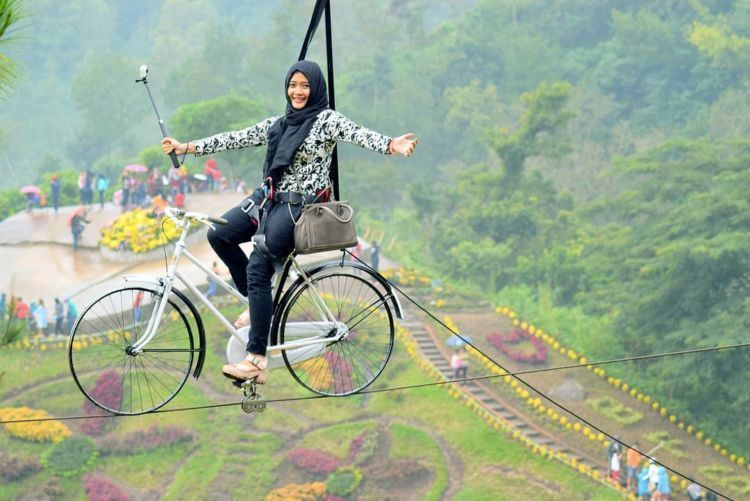 gowes air