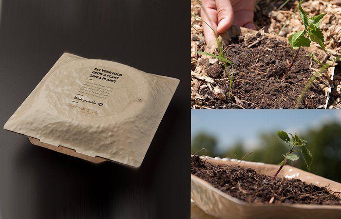 Itu tutup yang ada tulisannya bisa dikupas dan ada biji tumbuhan di sana ~