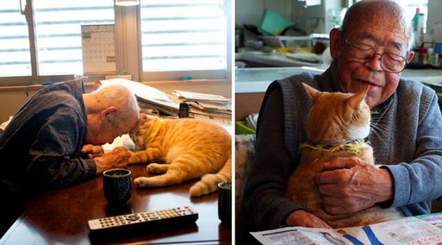 Kucing Lucu Ini Ubah Hidup Kakek 94 Tahun Yang Pemarah