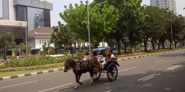 Keliling Monas Bisa Naik Delman