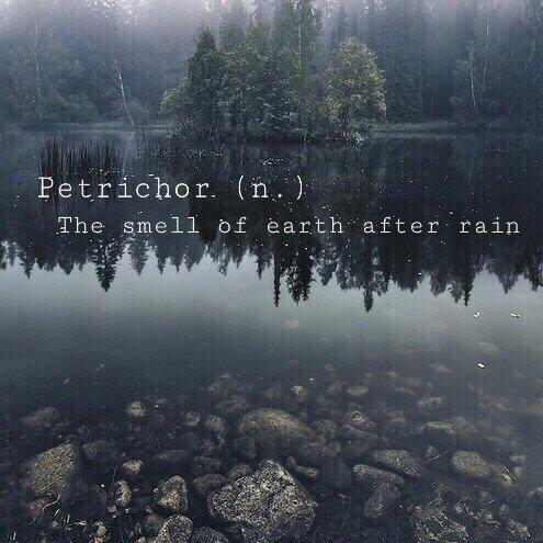 petrichor1-7272