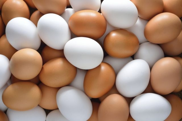 telur tetap awet