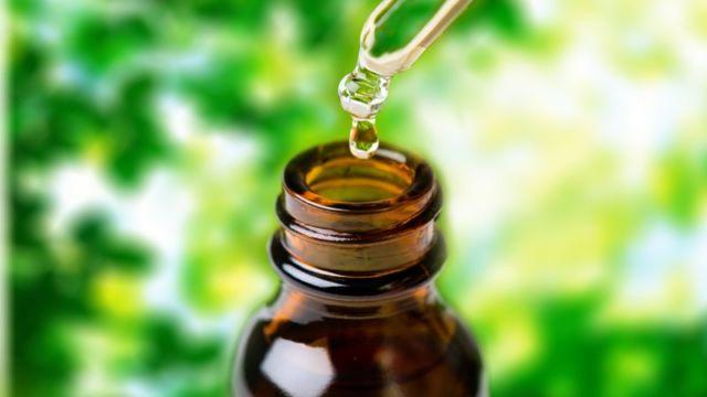 khasiat minyak kayu putih