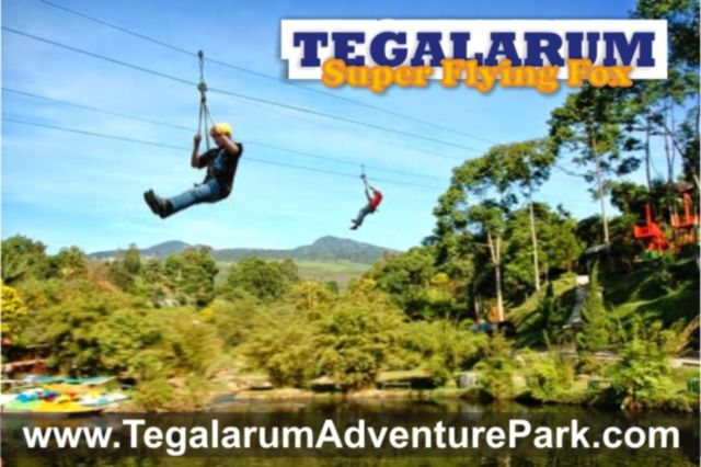flying fox di Tegalarum
