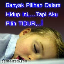 tidur seharian