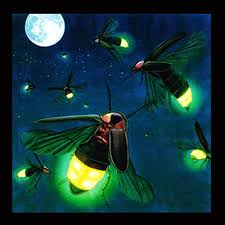 Cahaya yang terpancar untuk kunang-kunang pertahanan diri