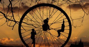 roda takdir