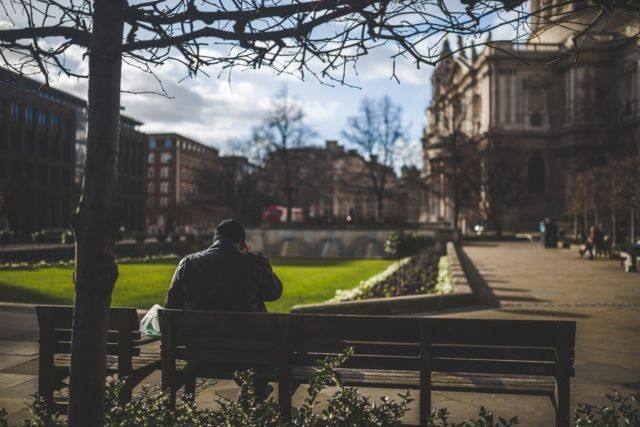 man-sitting-on-brown-wooden-bench-during-daytime