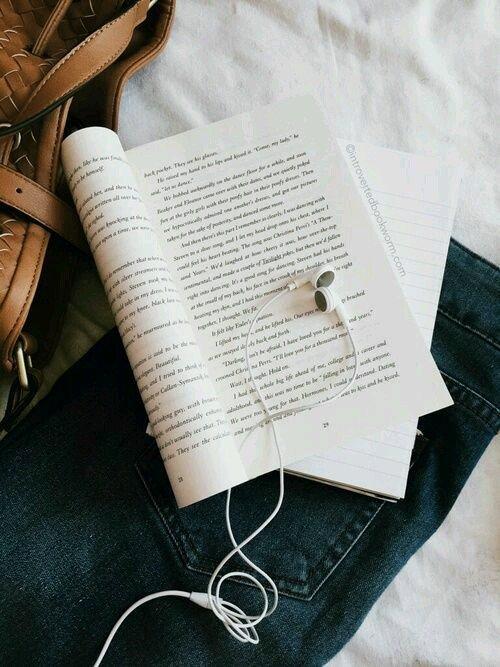 Membaca Novel