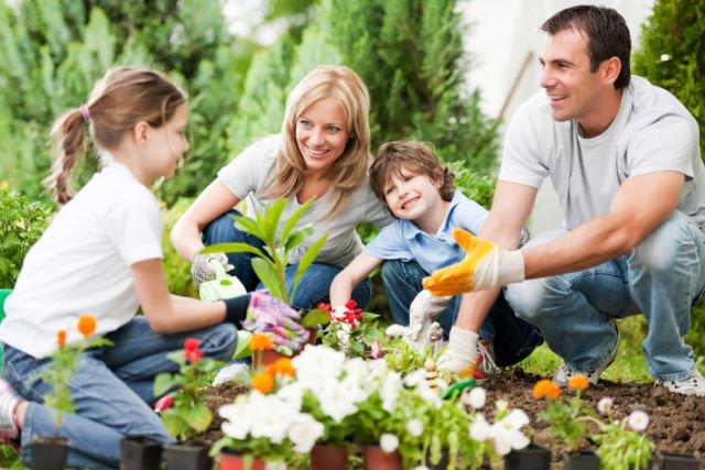 family gardening misalnya