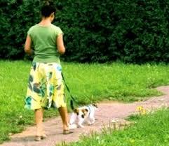 Pemilik Kucing Mengajak Kucing Peliharaannya Jalan-Jalan