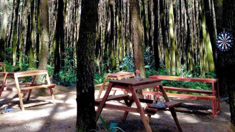Enggan Macet Di Puncak Tempat Wisata Alam Di Bogor Ini