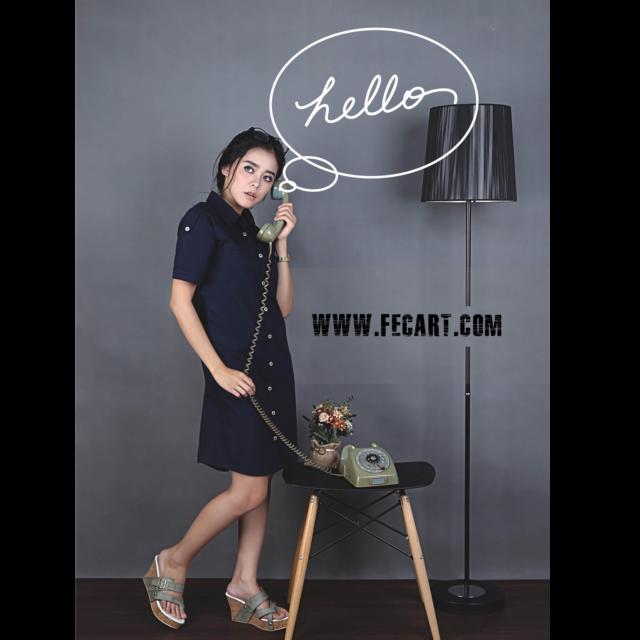FECART.COM