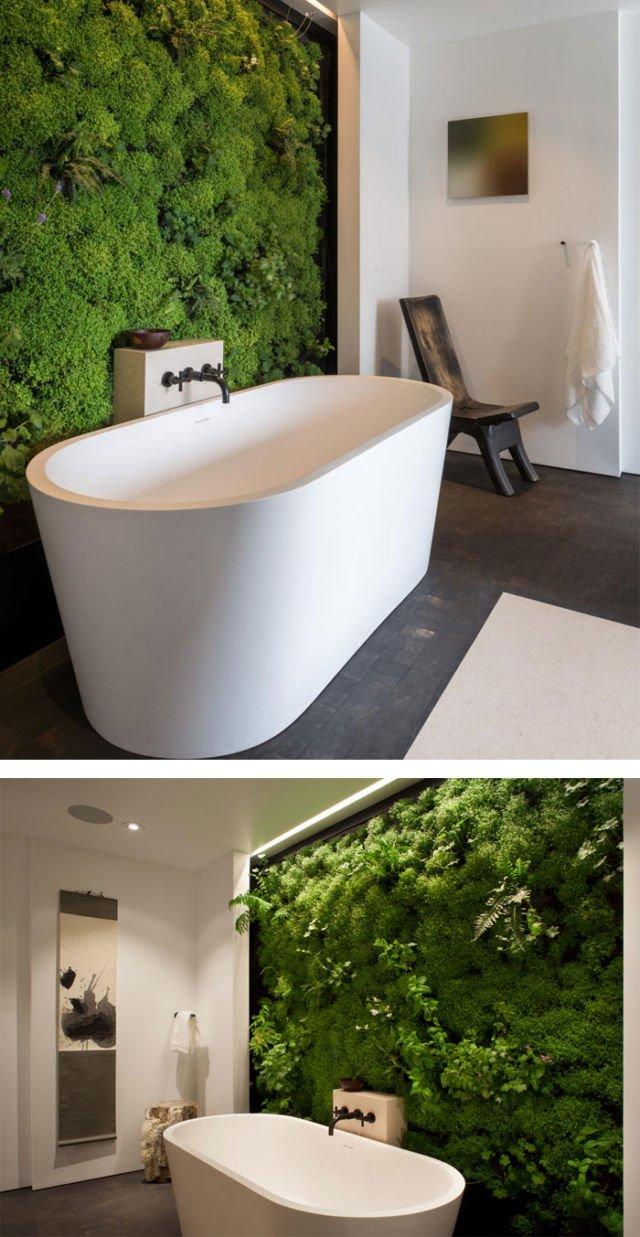 lumut pada dinding kamar mandi
