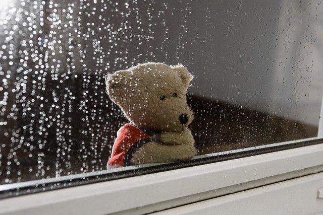 Hujan dan harapan