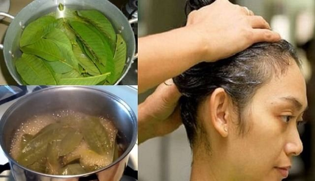 perawatan rambut baru