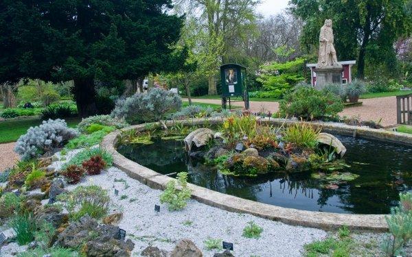 Chelsea Physic Garden: Pond Rockery