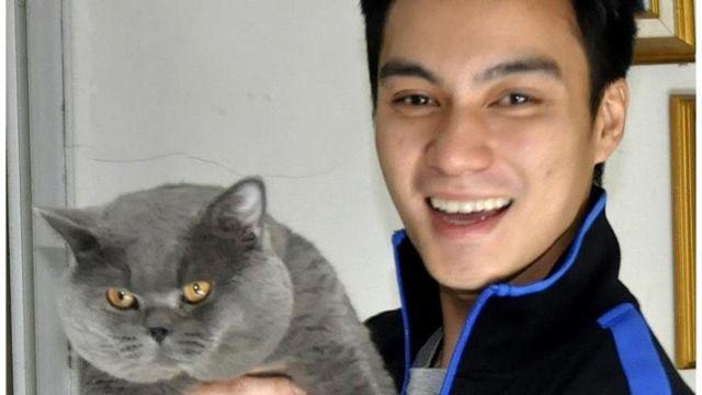 Pecinta Kucing