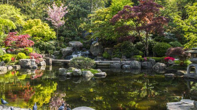 Kyoto Garden: Japanese Garden Since 1991