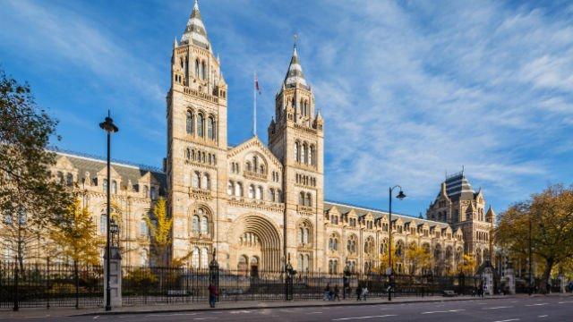 Natural History Museum London, Inggris