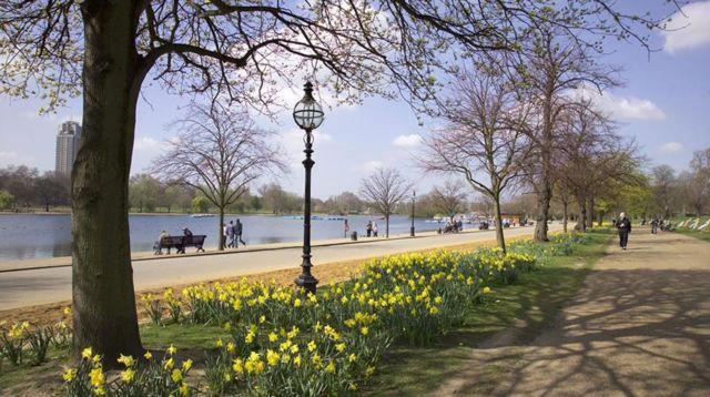 Refreshing di Royal Park