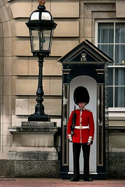 Guard at Buckingham Palace, Lodon UK