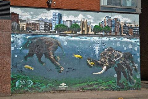 Gajahnya berenang di tengah Sungai Clyde